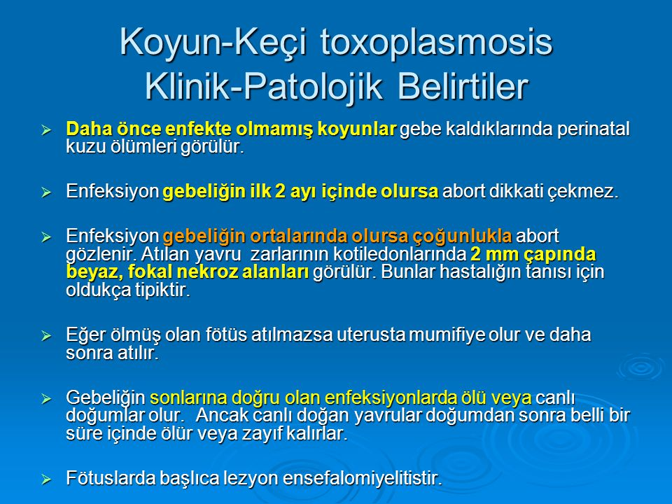 Koyun-Keçi toxoplasmosis Klinik-Patolojik Belirtiler