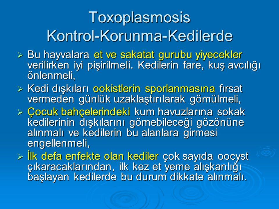 Toxoplasmosis Kontrol-Korunma-Kedilerde