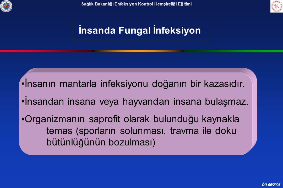 İnsanda Fungal İnfeksiyon