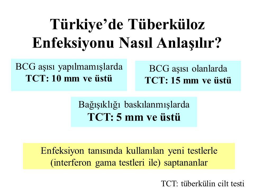 Türkiye'de Tüberküloz Enfeksiyonu Nasıl Anlaşılır