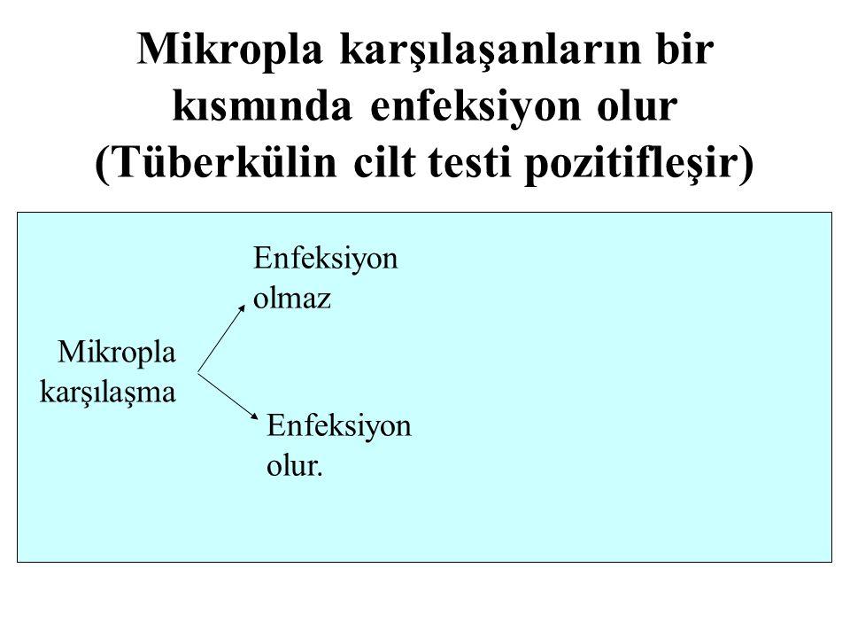 Mikropla karşılaşanların bir kısmında enfeksiyon olur (Tüberkülin cilt testi pozitifleşir)