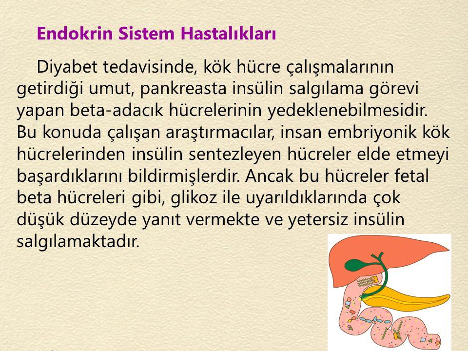 Endokrin Sistem Hastalıkları