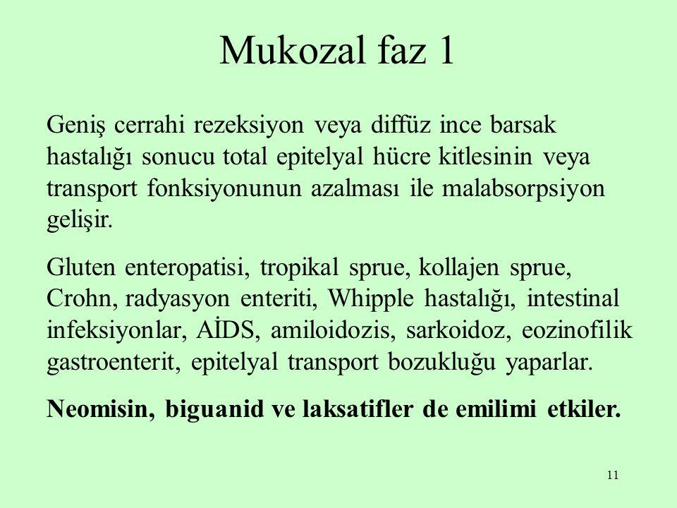 Mukozal faz 1