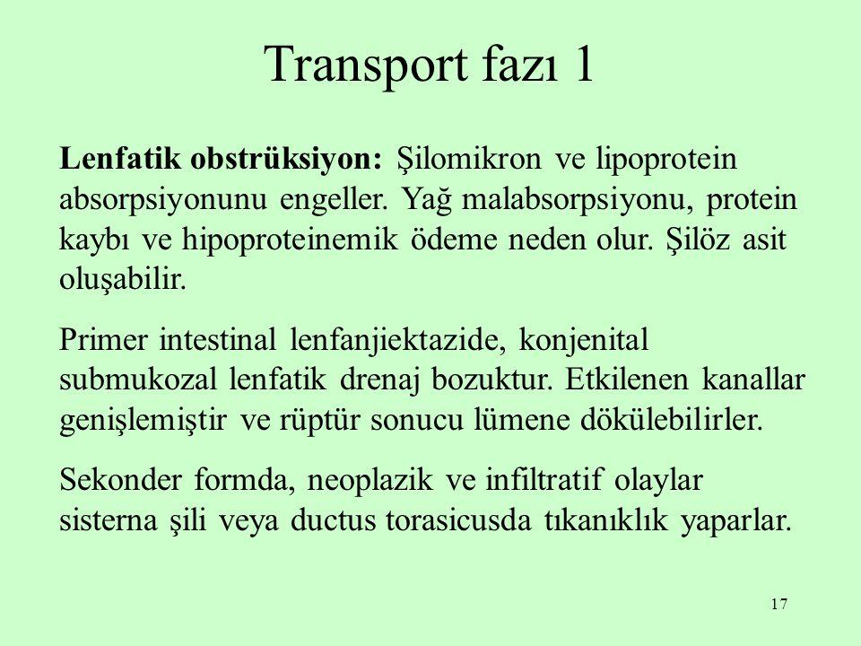 Transport fazı 1