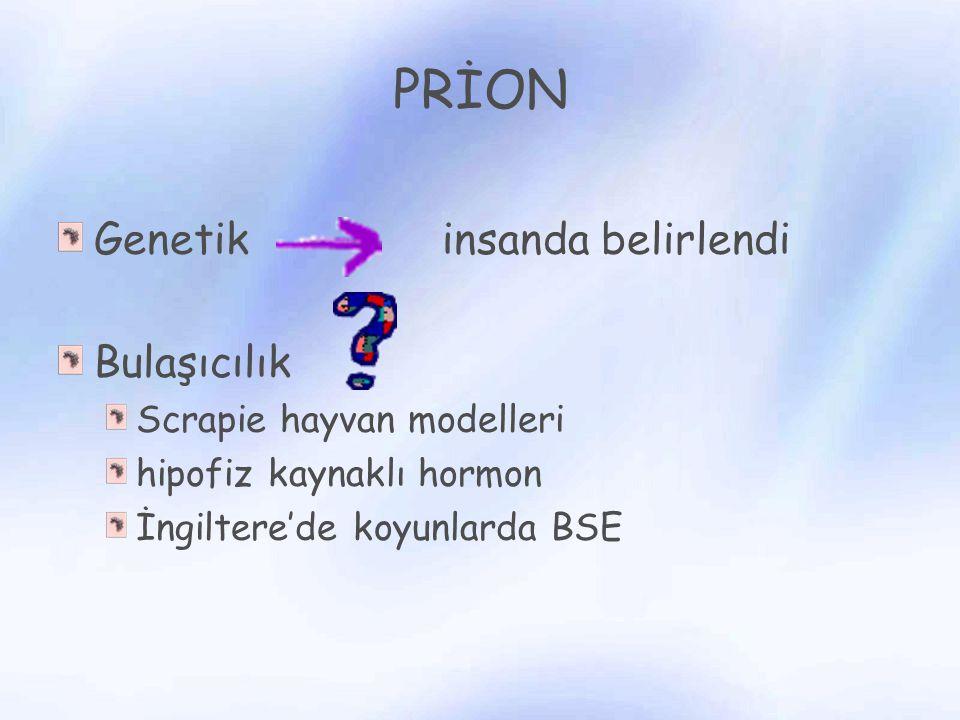 PRİON Genetik insanda belirlendi Bulaşıcılık Scrapie hayvan modelleri