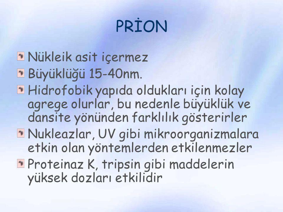 PRİON Nükleik asit içermez Büyüklüğü 15-40nm.