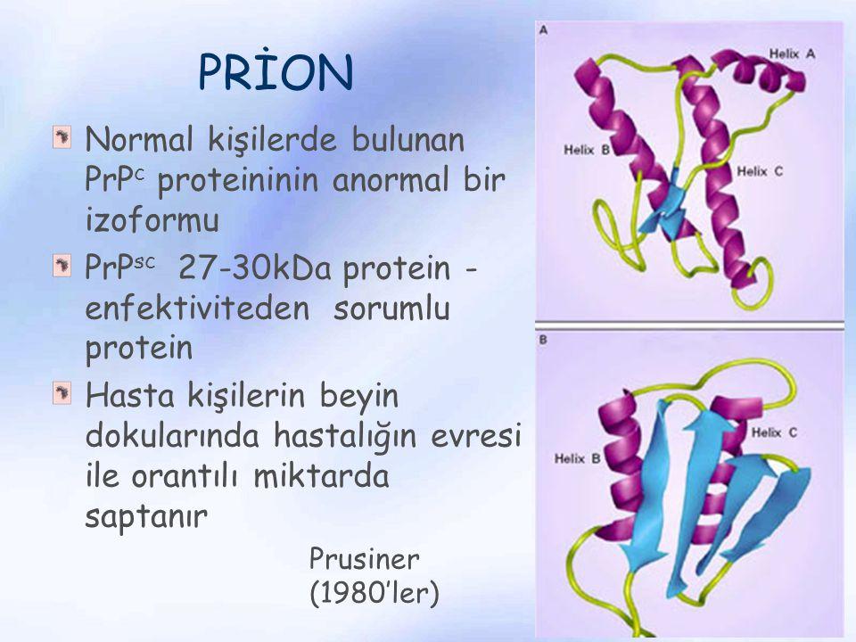 PRİON Normal kişilerde bulunan PrPc proteininin anormal bir izoformu