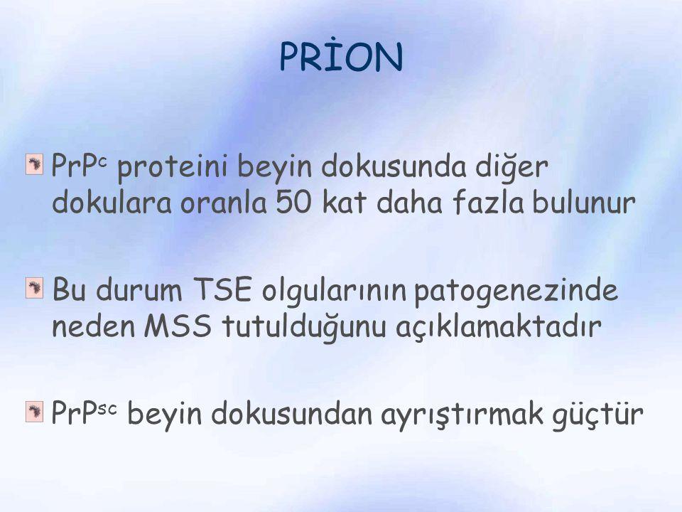 PRİON PrPc proteini beyin dokusunda diğer dokulara oranla 50 kat daha fazla bulunur.