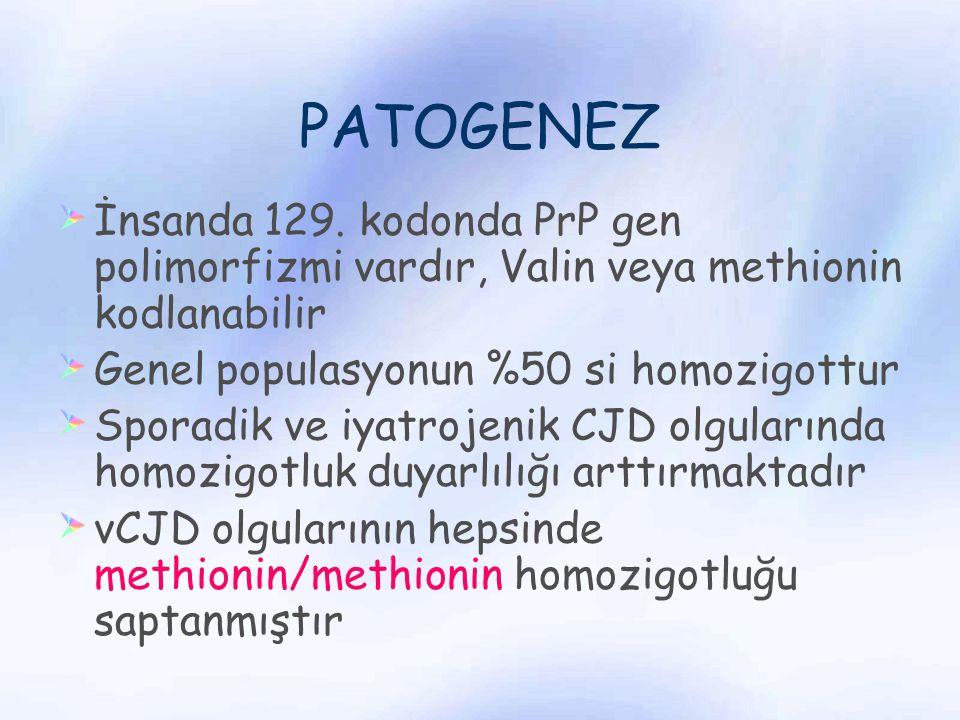 PATOGENEZ İnsanda 129. kodonda PrP gen polimorfizmi vardır, Valin veya methionin kodlanabilir. Genel populasyonun %50 si homozigottur.