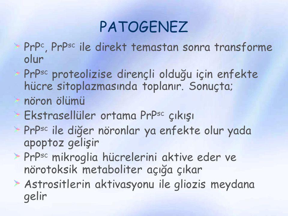 PATOGENEZ PrPc, PrPsc ile direkt temastan sonra transforme olur