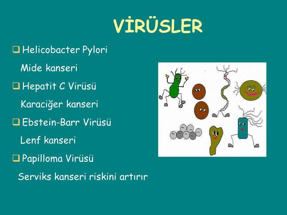 VİRÜSLER Artırmaktadır Helicobacter Pylori Mide kanseri