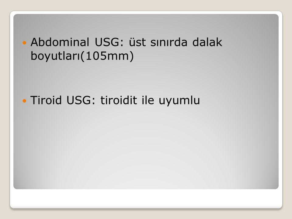 Abdominal USG: üst sınırda dalak boyutları(105mm)