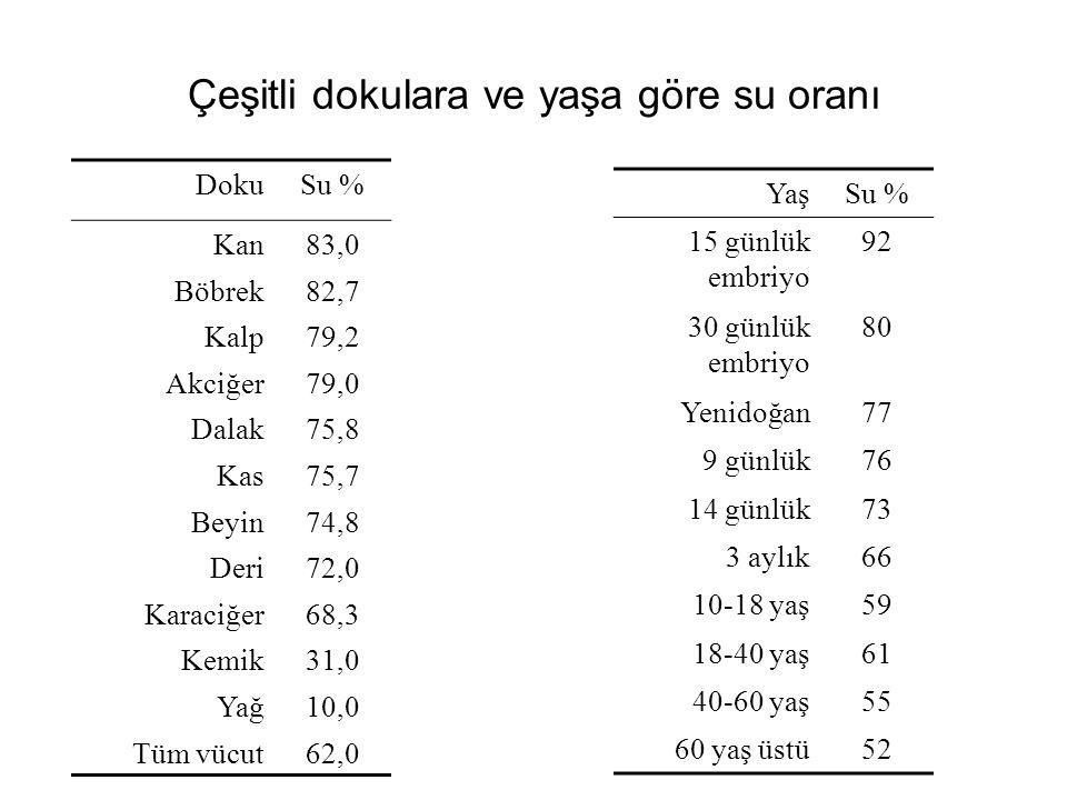 Çeşitli dokulara ve yaşa göre su oranı