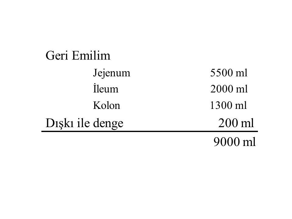 Geri Emilim Dışkı ile denge 200 ml Jejenum 5500 ml İleum 2000 ml