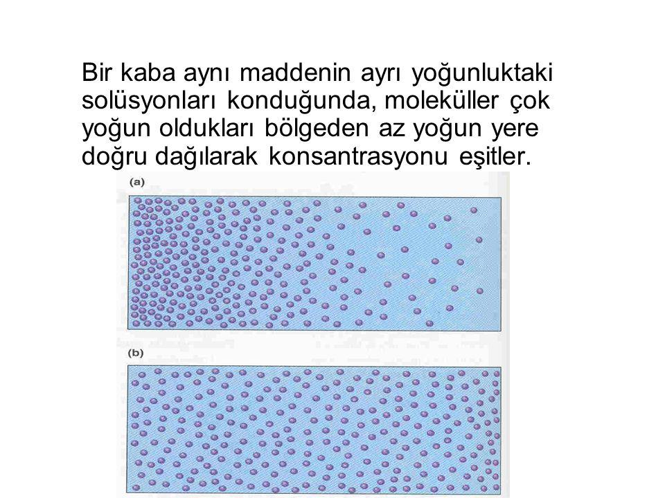 Bir kaba aynı maddenin ayrı yoğunluktaki solüsyonları konduğunda, moleküller çok yoğun oldukları bölgeden az yoğun yere doğru dağılarak konsantrasyonu eşitler.
