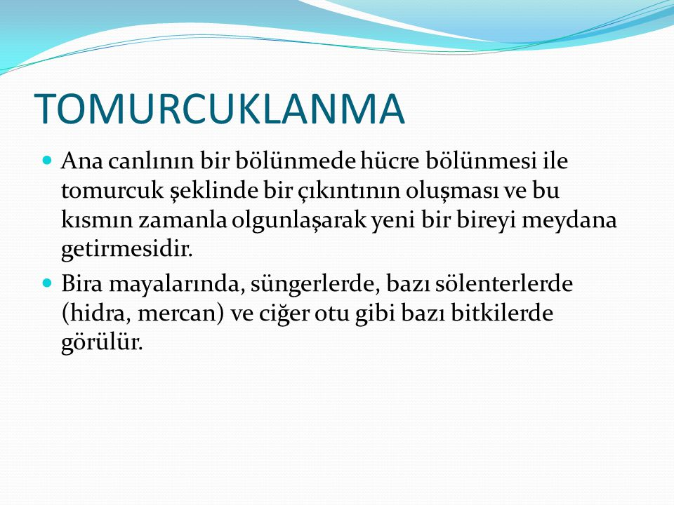 TOMURCUKLANMA