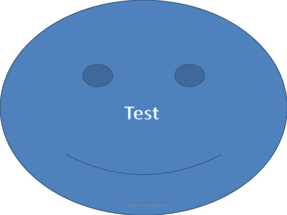 Test www.egitimcininadresi.com