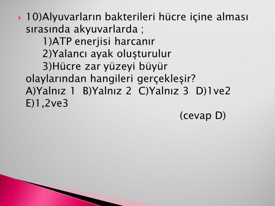 10)Alyuvarların bakterileri hücre içine alması sırasında akyuvarlarda ; 1)ATP enerjisi harcanır 2)Yalancı ayak oluşturulur 3)Hücre zar yüzeyi büyür olaylarından hangileri gerçekleşir A)Yalnız 1 B)Yalnız 2 C)Yalnız 3 D)1ve2 E)1,2ve3 (cevap D)