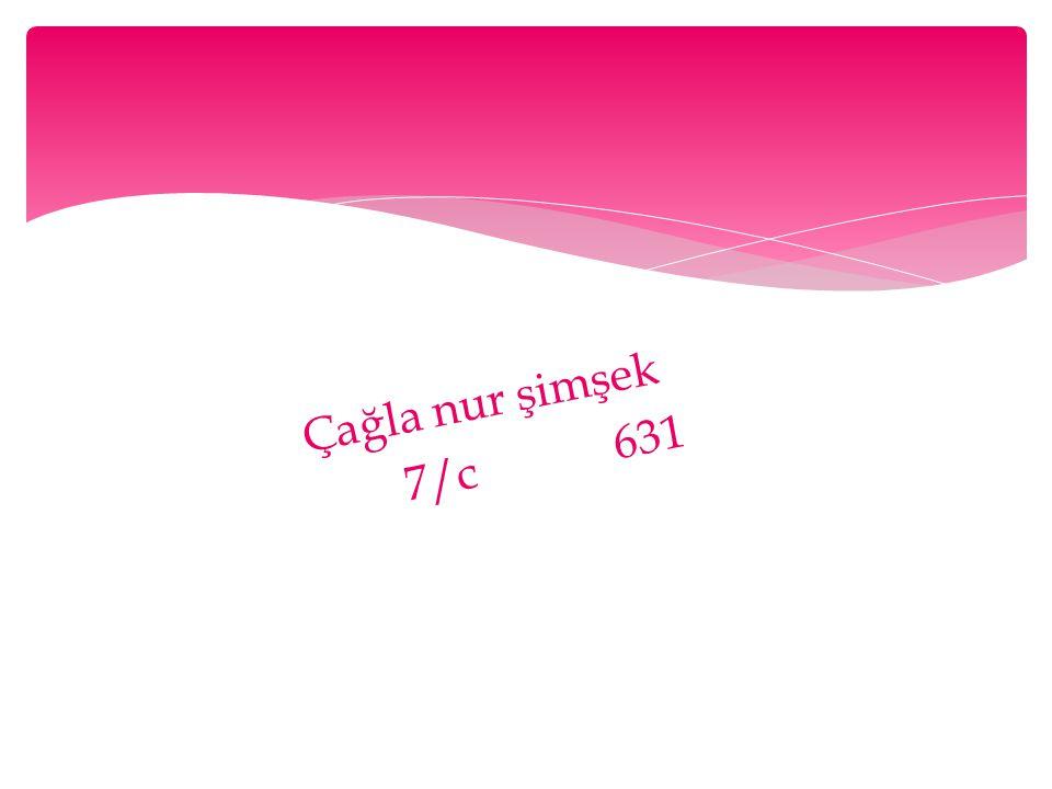 Çağla nur şimşek 7/c 631