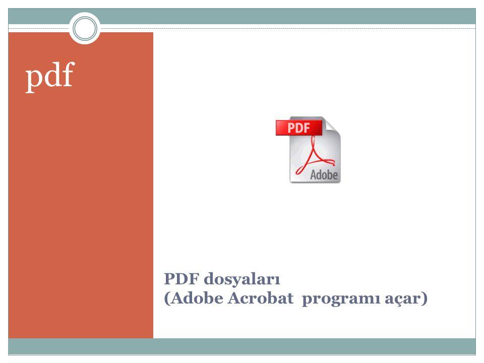 PDF dosyaları (Adobe Acrobat programı açar)
