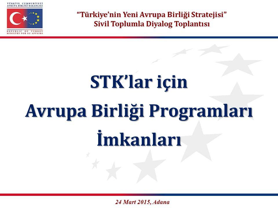 STK'lar için Avrupa Birliği Programları İmkanları