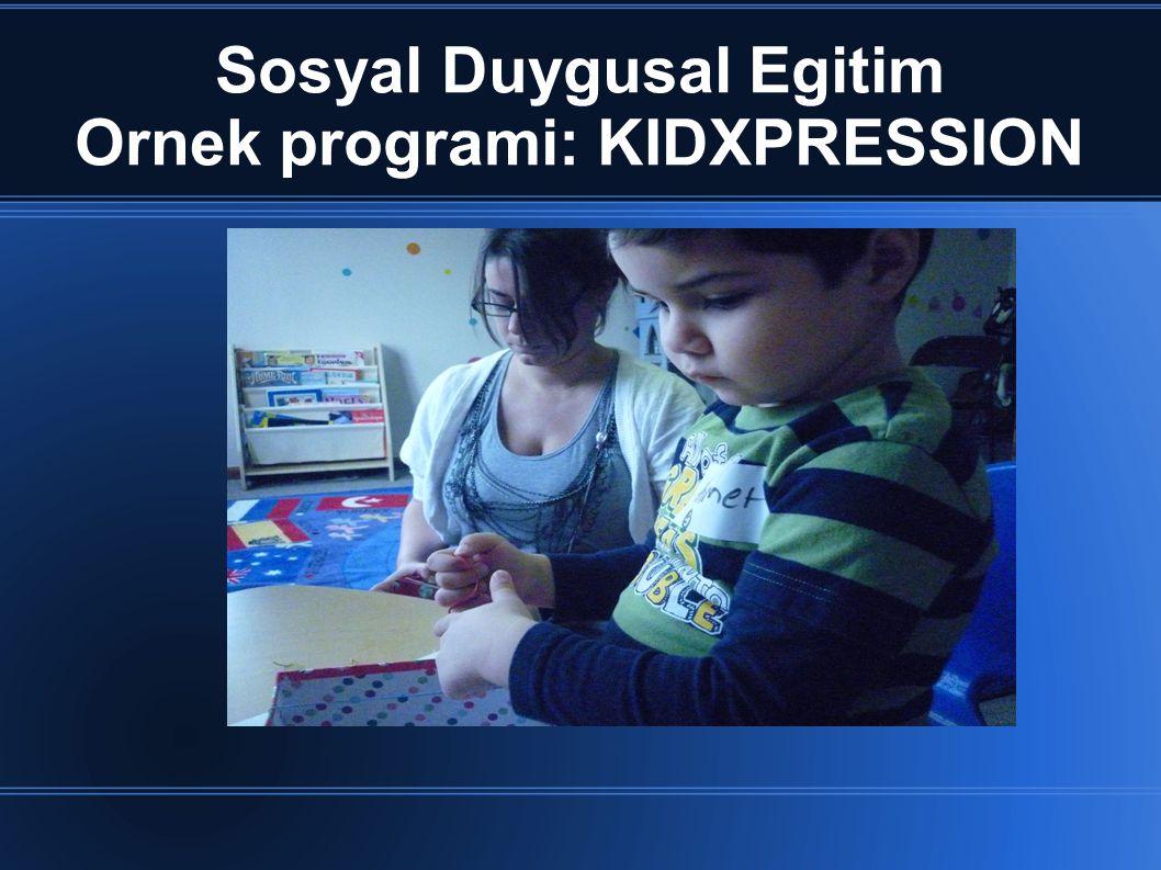 Sosyal Duygusal Egitim Ornek programi: KIDXPRESSION