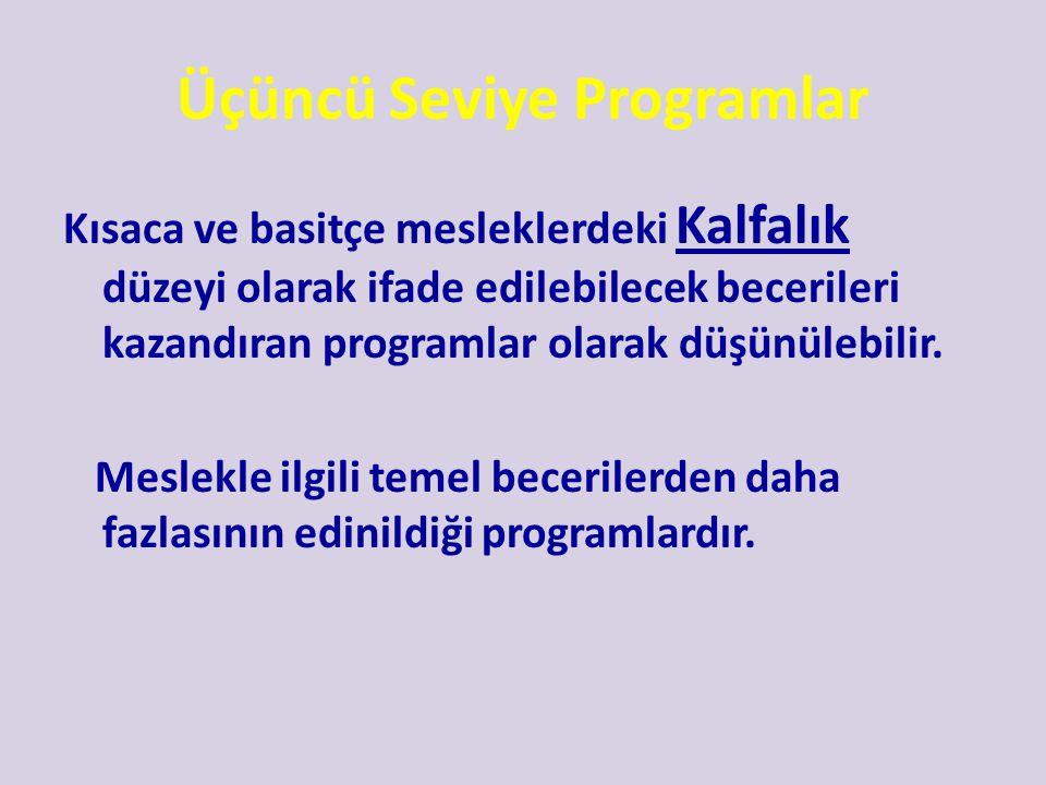 Üçüncü Seviye Programlar