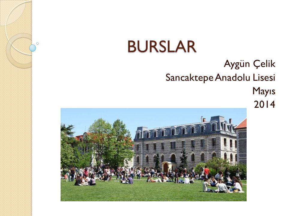 Aygün Çelik Sancaktepe Anadolu Lisesi Mayıs 2014