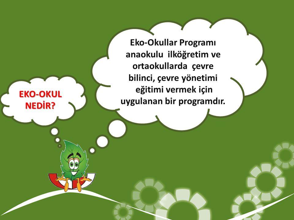 Eko-Okullar Programı anaokulu ilköğretim ve