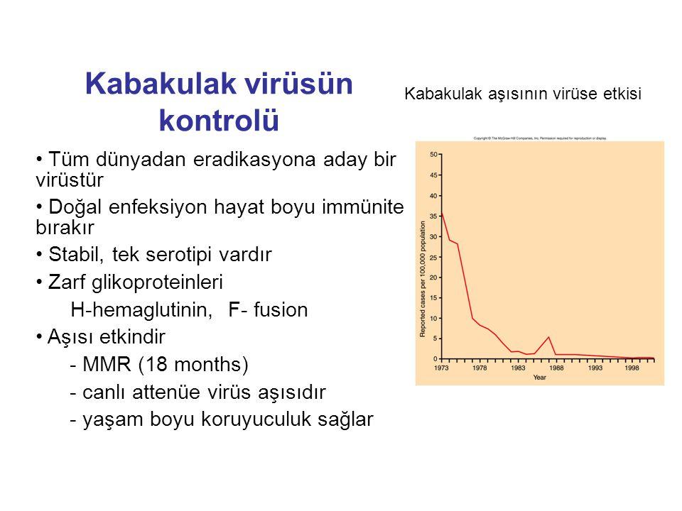 Kabakulak virüsün kontrolü