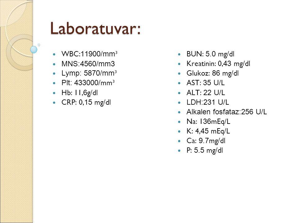Laboratuvar: WBC:11900/mm³ MNS:4560/mm3 Lymp: 5870/mm³ Plt: 433000/mm³