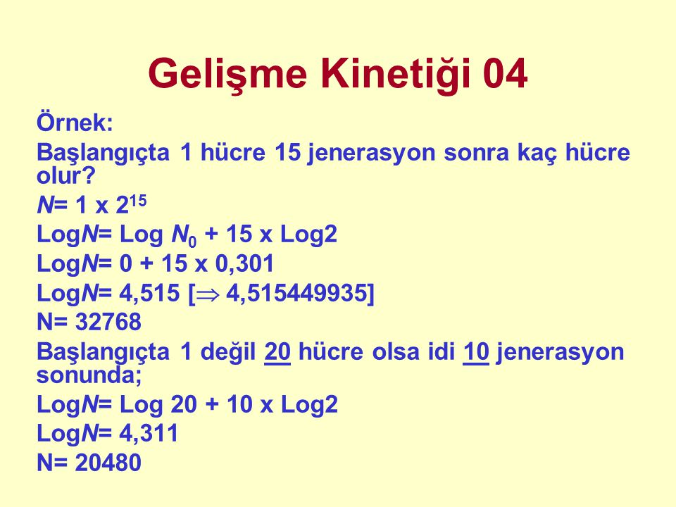 Gelişme Kinetiği 04 Örnek: