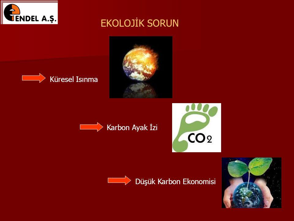 EKOLOJİK SORUN Küresel Isınma Karbon Ayak İzi Düşük Karbon Ekonomisi
