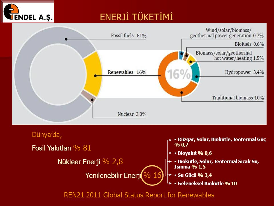 REN21 2011 Global Status Report for Renewables