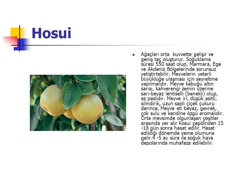 Hosui