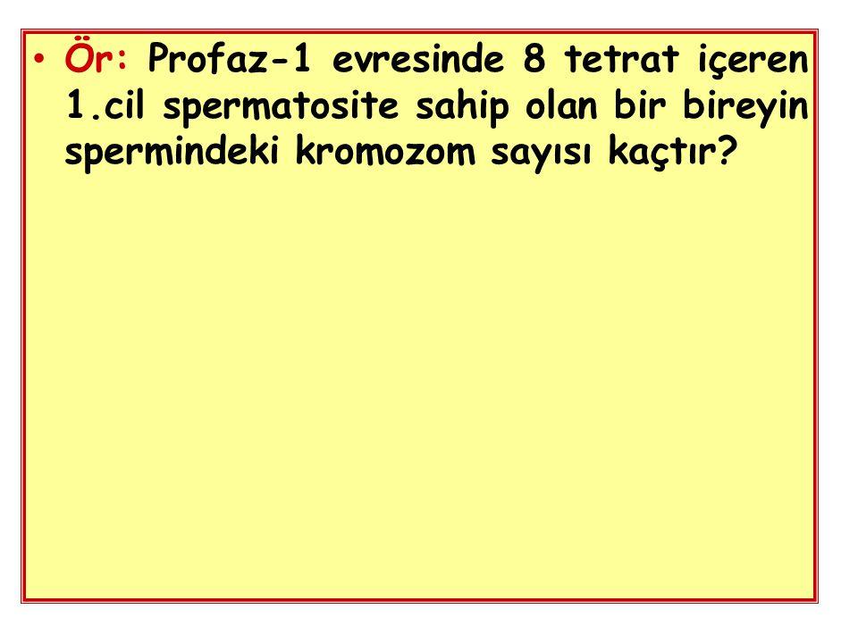 Ör: Profaz-1 evresinde 8 tetrat içeren 1