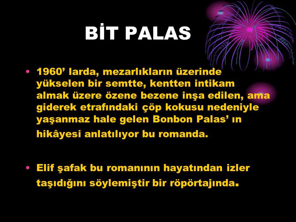BİT PALAS