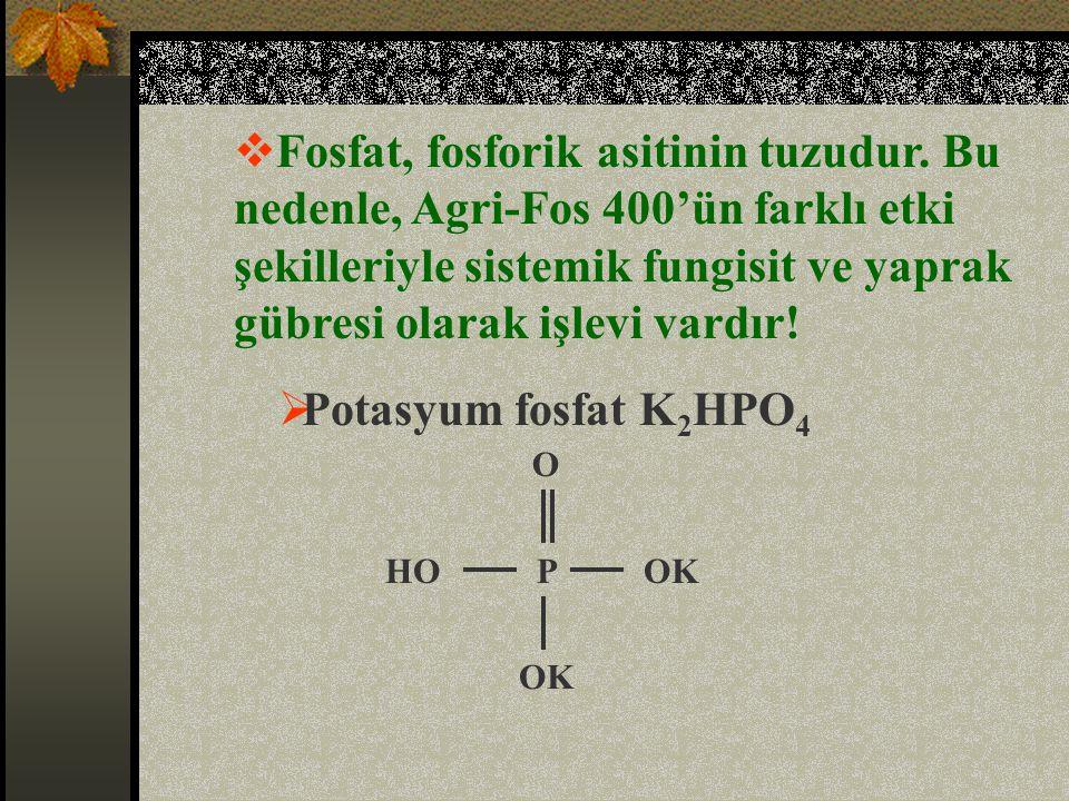 Fosfat, fosforik asitinin tuzudur