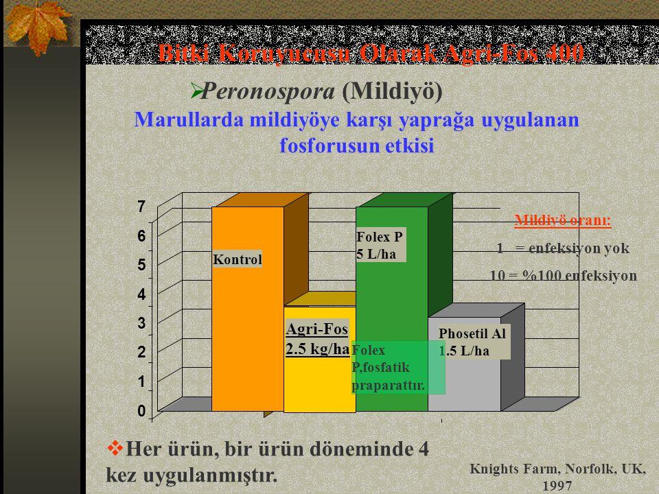 Bitki Koruyucusu Olarak Agri-Fos 400 Peronospora (Mildiyö)