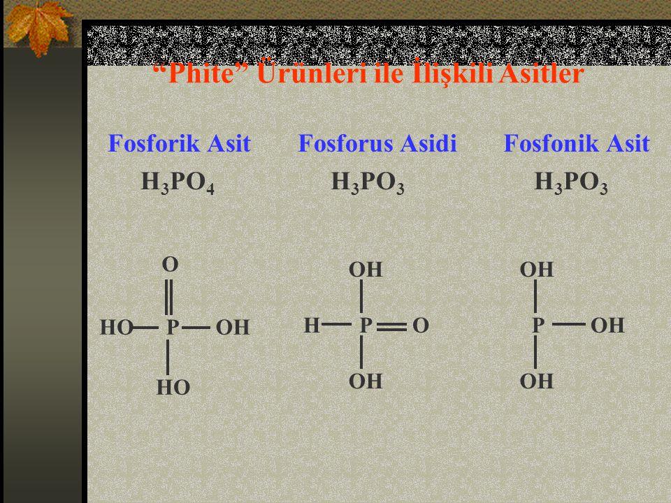 Phite Ürünleri ile İlişkili Asitler