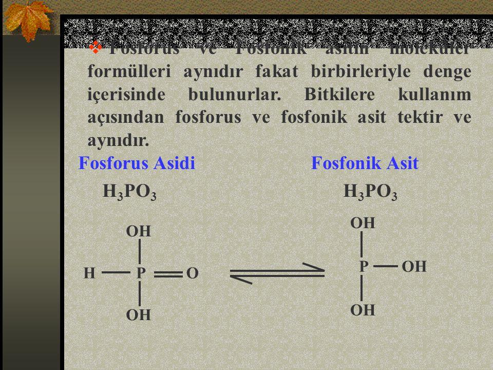 Fosforus Asidi Fosfonik Asit H3PO3 H3PO3