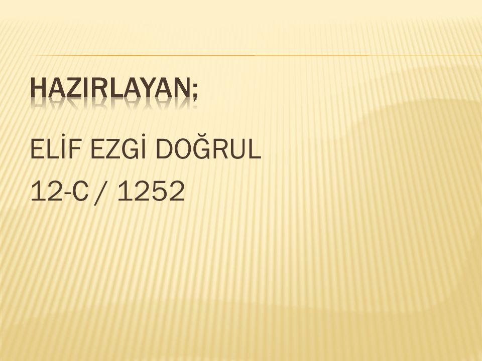 HAZIRLAYAN; ELİF EZGİ DOĞRUL 12-C / 1252