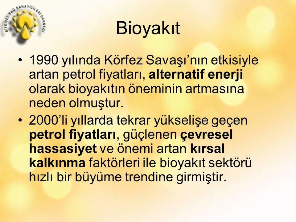 Bioyakıt 1990 yılında Körfez Savaşı'nın etkisiyle artan petrol fiyatları, alternatif enerji olarak bioyakıtın öneminin artmasına neden olmuştur.
