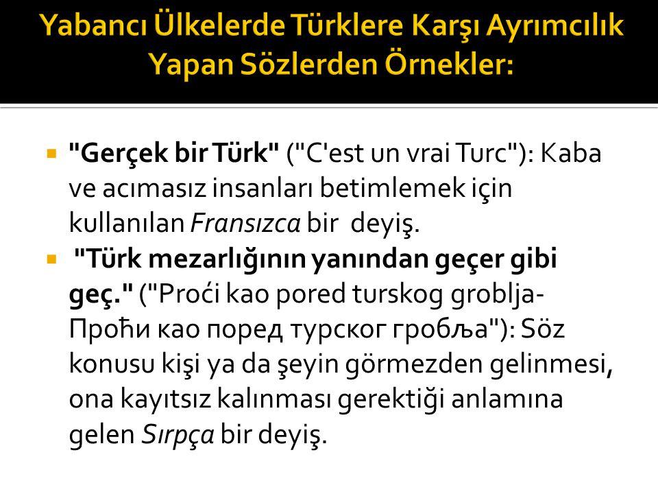 Yabancı Ülkelerde Türklere Karşı Ayrımcılık Yapan Sözlerden Örnekler: