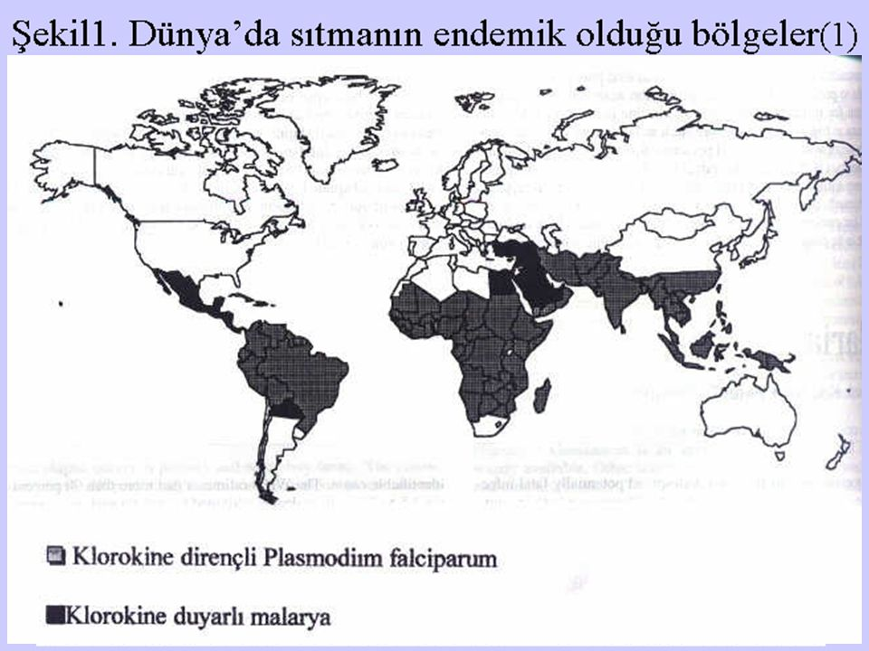 Şekil1. Dünya'da sıtmanın endemik olduğu bölgeler(1)