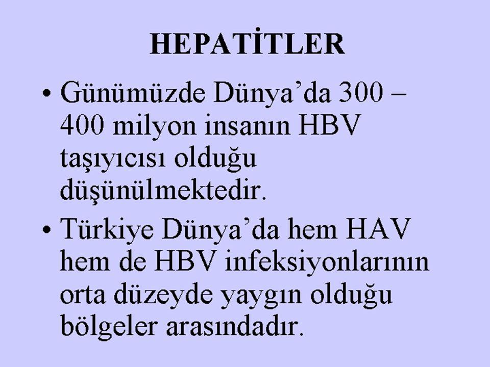 HEPATİTLER Günümüzde Dünya'da 300 – 400 milyon insanın HBV taşıyıcısı olduğu düşünülmektedir.