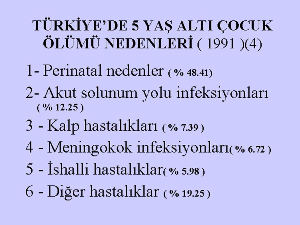 TÜRKİYE'DE 5 YAŞ ALTI ÇOCUK ÖLÜMÜ NEDENLERİ ( 1991 )(4)