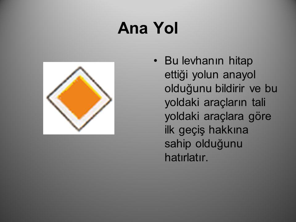 Ana Yol