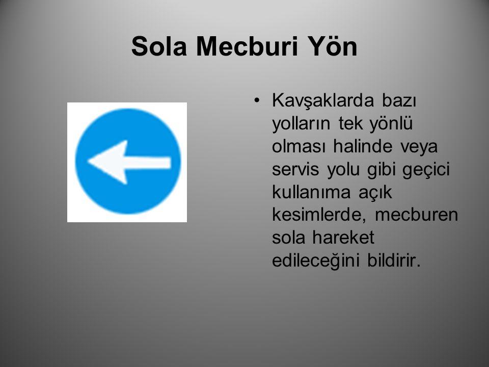 Sola Mecburi Yön