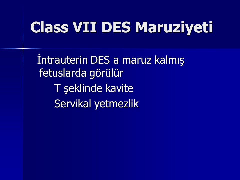 Class VII DES Maruziyeti